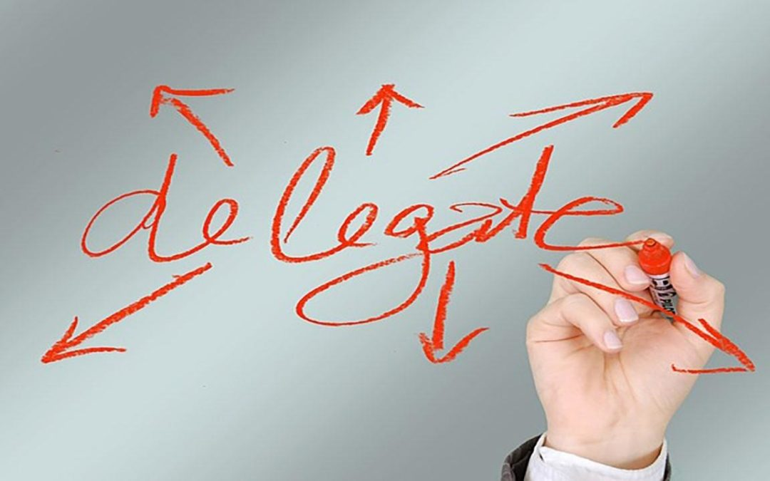 How to Choose what you Do and what you Delegate to Get Best Results?